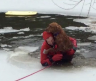 Emmett, a 3-year-old Golden Retriever, was rescued from an icy pond in his backyard.