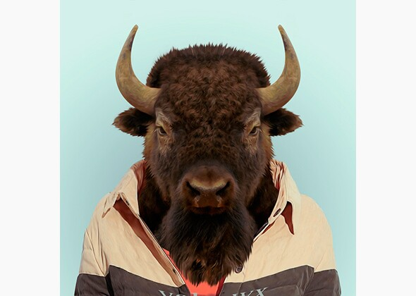 'Zoo Portraits' Feature Animals in Clothing