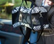Cat Carrier Going Into Car