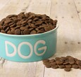 Spilled dog food