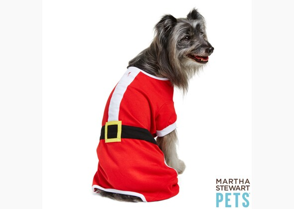 Christmas Pajamas For Dogs.Our Favorite Holiday Outfits And Accessories For Dogs