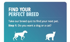 Vetstreet's Breed Finder module