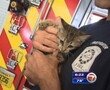 Fourt Lauderdale firefighter Eric Fillyaw adopted the kitten he found in the engine of a Porsche.